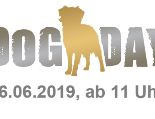 16.06.19 – Dorstener Dog Day